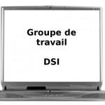 Groupe de travail DSI : timide redémarrage 15 mars 2013